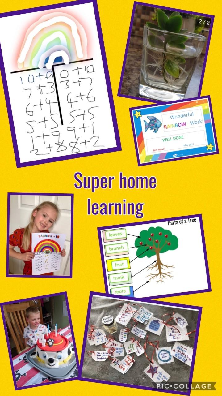 Remote Education Provision